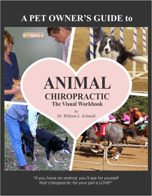 2018 edition animal chiropractic visual workbook front cover